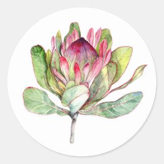 De Bloem van Protea Ronde Sticker