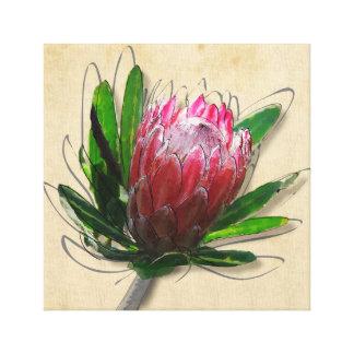 De Bloem van Protea van de koning Canvas Print