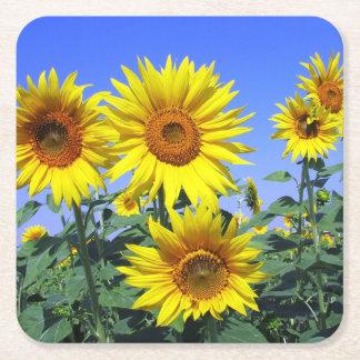 De bloemen Gele Partij van het Huwelijk van de Vierkante Onderzetter
