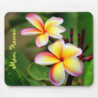 De Bloemen Mousepad van Maui Plumeria Muismat