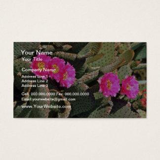 De bloemen van de Cactus van Beavertail Visitekaartjes