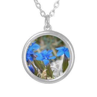 De Bloemen van de Gentiaan van de lente Zilver Vergulden Ketting