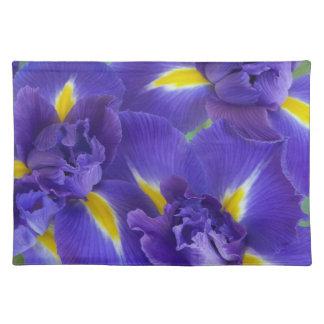 De bloemen van de iris placemat