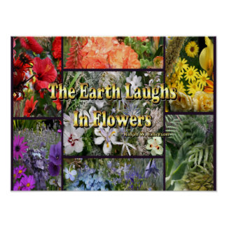 De Bloemen van de regenboog - de Lach van de Aarde Poster