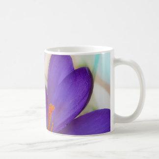 De BloemenRegeling van de krokus en van het Koffiemok