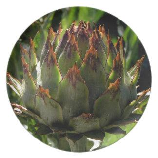 De bloemknop van de kardoen melamine+bord