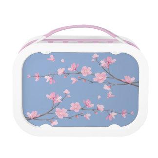 De Bloesem van de kers - het Blauw van de Lunchbox