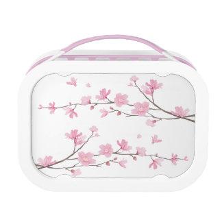 De Bloesem van de kers - Transparante Achtergrond Lunchbox