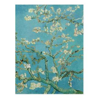De Bloesems van de amandel door Vincent van Gogh Briefkaart