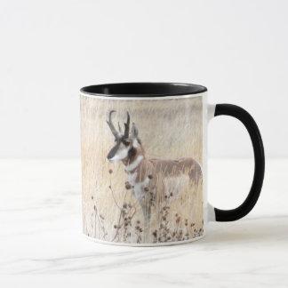 De Bok van de Antilope van Pronghorn op het Gebied Mok