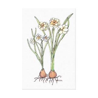 De Bollen van de lente Canvas Afdruk