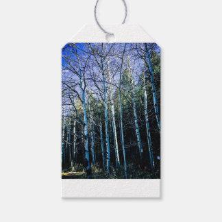 De bomen en de espen van de pijnboom in herfst cadeaulabel