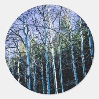 De bomen en de espen van de pijnboom in herfst ronde sticker