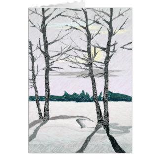De Bomen van de berk in de Ochtend Briefkaarten 0