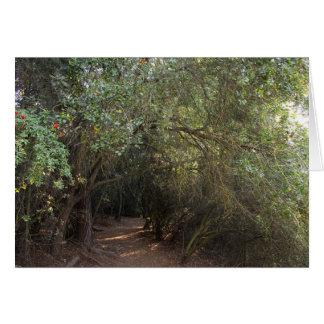 De Bomen van het Park van de Canion van Franklin Kaart