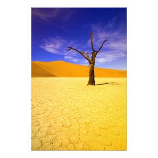 De bomen van het skelet in Dode Vlei Sossusvlei, Foto