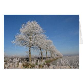 De Bomen van Kelso Kaart