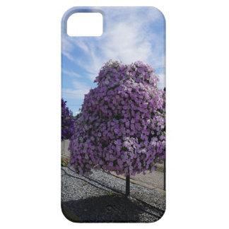 De Boom van de petunia bij het Groen in Kelowna Barely There iPhone 5 Hoesje