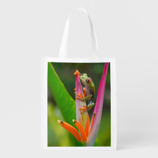 De boomkikker van het rood-oog, Costa Rica 2 Boodschappentas