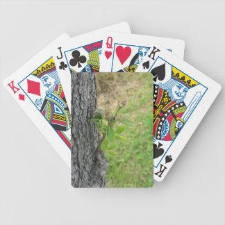 De boomtakje van de peer met knoppen in de lente pak kaarten