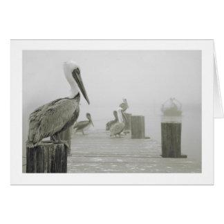 De boot van pelikanen en van Garnalen Kaart