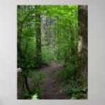 De bos de ganglente 3 van GT Poster