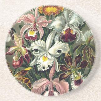 De Botanische Druk van de orchidee Zandsteen Onderzetter