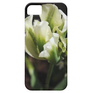 De Botanische Fotografie van de Tuin van de Tulp Barely There iPhone 5 Hoesje