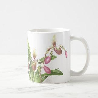 De botanische Orchidee van de Pantoffel Ladys Koffiemok