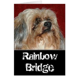 De Brug van de regenboog - mijn vriend Briefkaarten 0