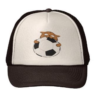 De bruine Kat van het Voetbal Mesh Petten