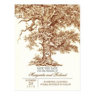 de bruine oude eiken boom bewaart de briefkaart