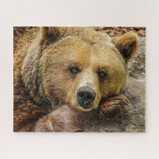 De bruine Puzzel van de Grizzly Puzzel