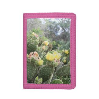 De cactus bloeit Portefeuille