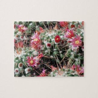 De Cactus van het speldenkussen bloeit Moeilijk Puzzel