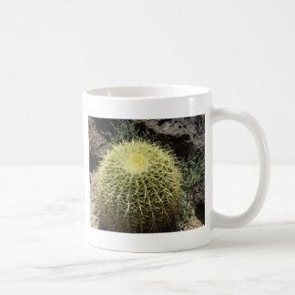 De Cactus van het vat Koffiemok