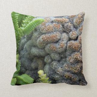 cactus kussens cactus sierkussens online bestellen