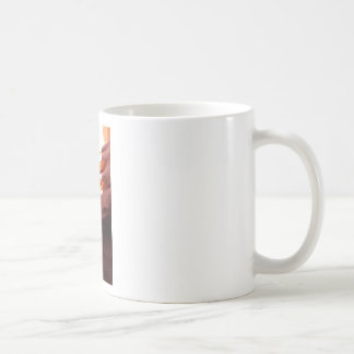De Canion van de antilope Koffiemok