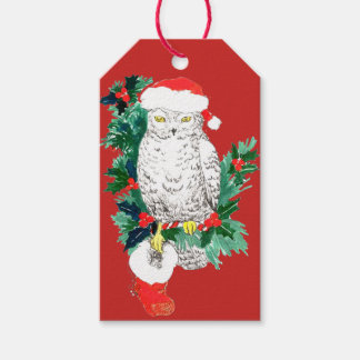 De capricieuze Kous van de Uil van Kerstmis en het Cadeaulabel