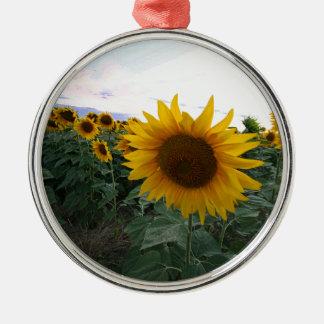 De Close-up van de zonnebloem Zilverkleurig Rond Ornament