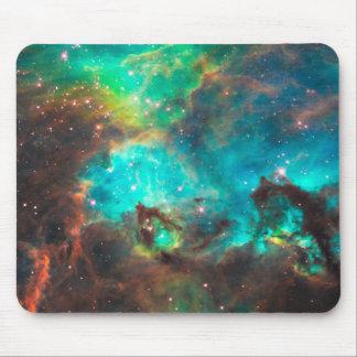 De Cluster NGC 2074 van de ster Muismat