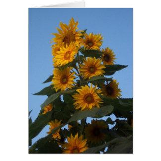 De Cluster Notecard van de zonnebloem Notitiekaart