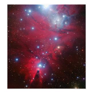 De Cluster van de Ster van de kerstboom Fotoprints