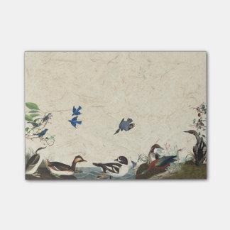 De Collage van Audubon van de Nota's van de Post-it® Notes
