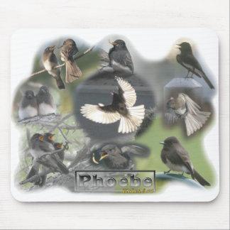 De Collage van de Foto van de Vogels van Phoebe Muismat