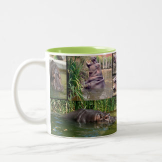 De Collage van de Foto van Hippo, Tweekleurige Koffiemok