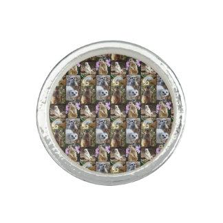 De Collage van de Foto van Meerkat, Zilveren Ronde Foto Ringen