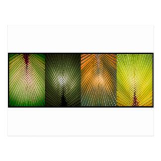 De Collage van het Varenblad van de palm Briefkaart