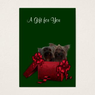 De collectieve Certificaten van de Gift van de