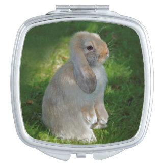 De Compacte Spiegel van het Konijn van Minilop van Reisspiegeltjes